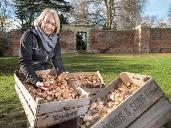 Brightening up the community with nearly 2,000 spring bulbs