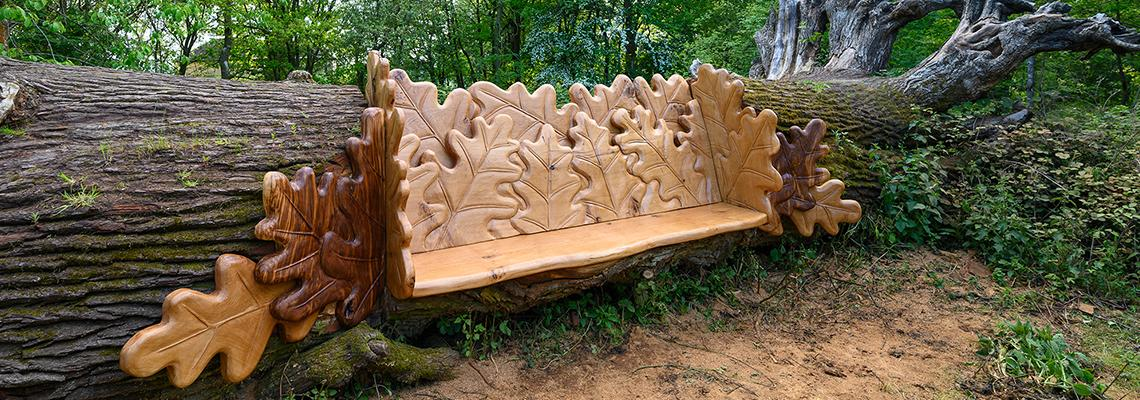 Chainsaw Champion Carves Stunning Seat From Fallen Oak