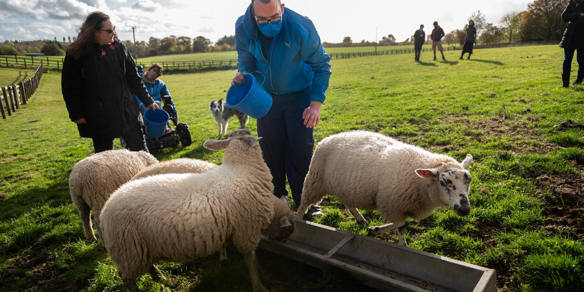 Co-farmers Hannah, Raf and Jamie feed some of Blenheim Estate's orphaned lambs