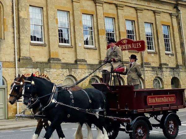 Meet the Hook Norton Brewery Shire Horses