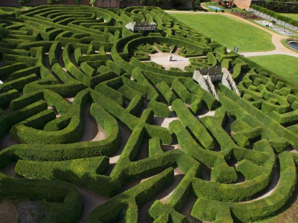 Marlborough Maze