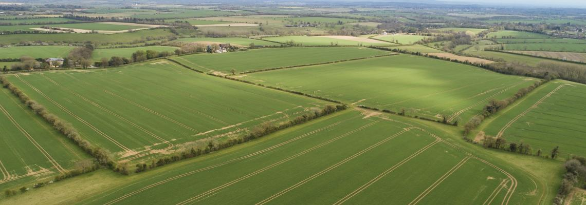 We're Inviting Tenders For Partnership on Arable Land
